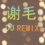 广东DJ谢毛